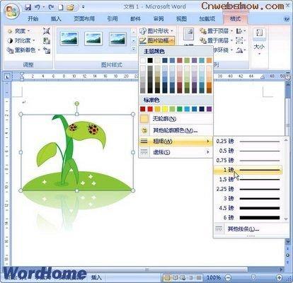 """种子粘贴画框-图2009032113 设置剪贴画边框线条类型 第4步,在""""图片边框""""列表"""